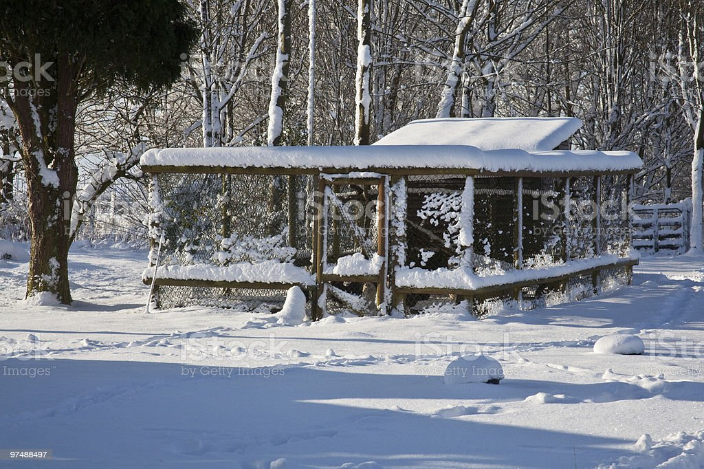 Chicken coop or hutch covered in snow royalty-free stock photo