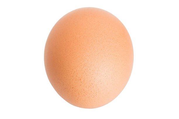chicken egg isolated on white. - religious celebration stock photos and pictures