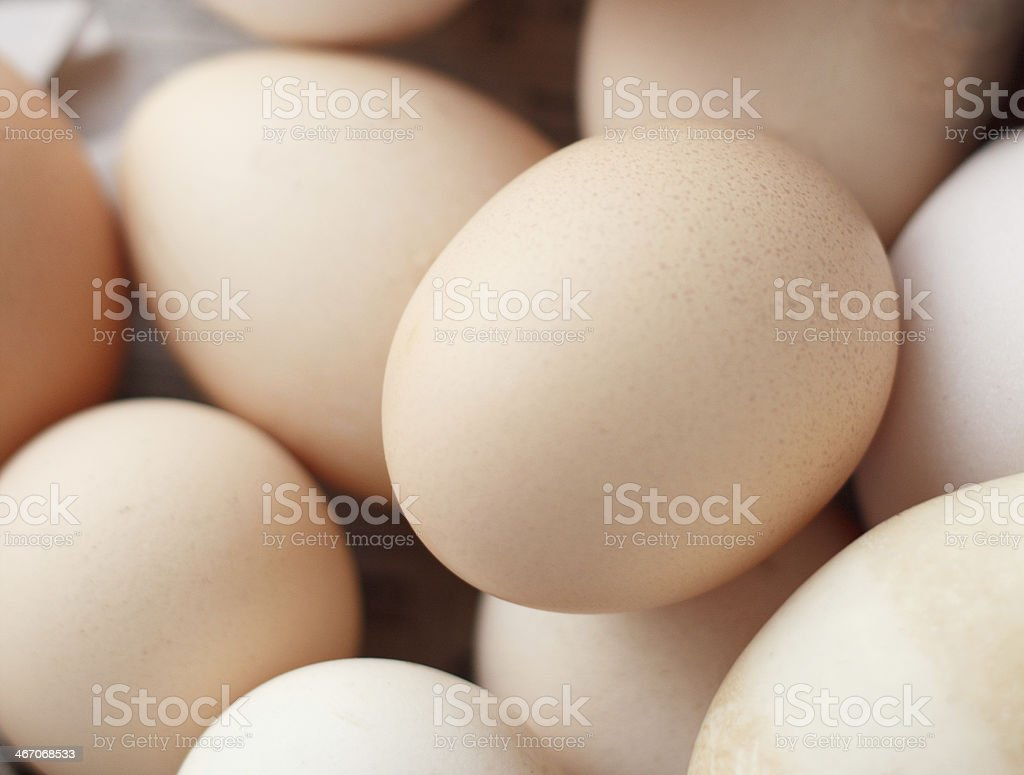 chicken eggs closeup royalty-free stock photo