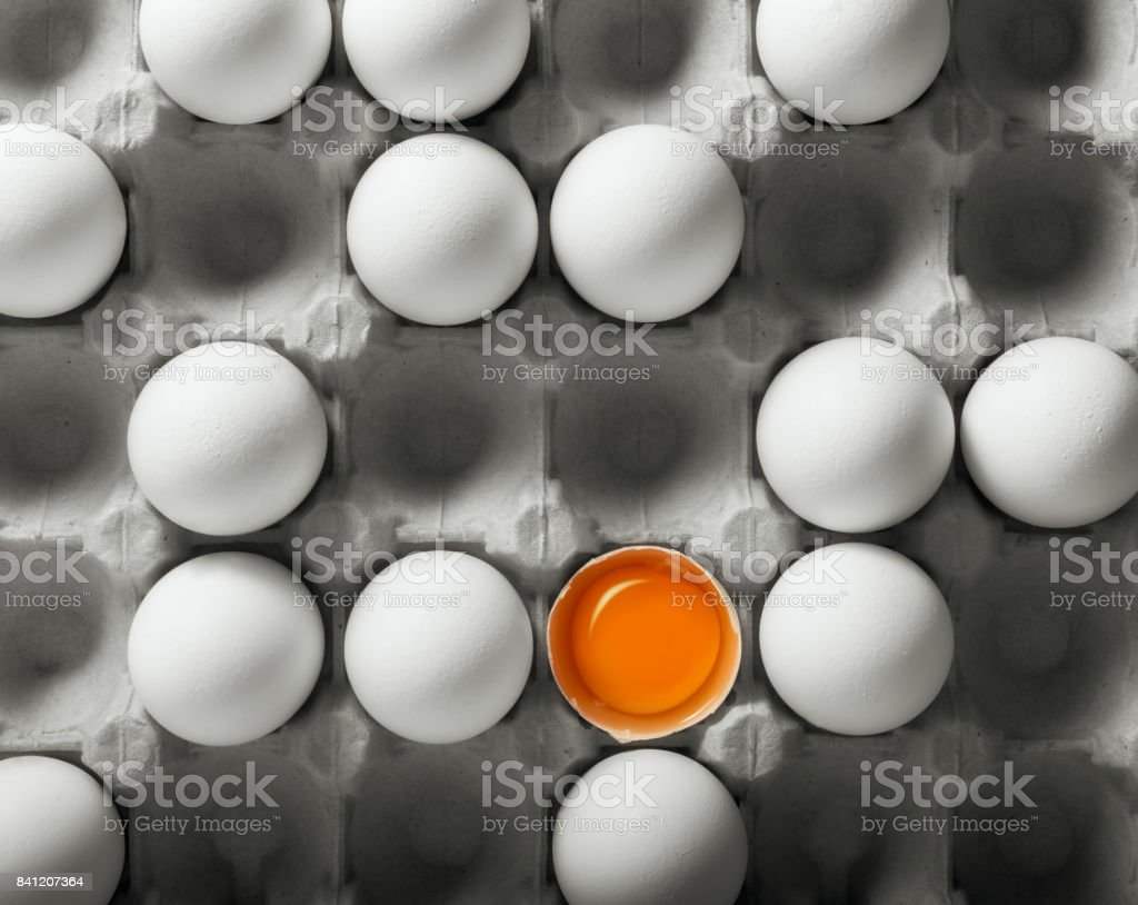 Chicken eggs in the package stock photo