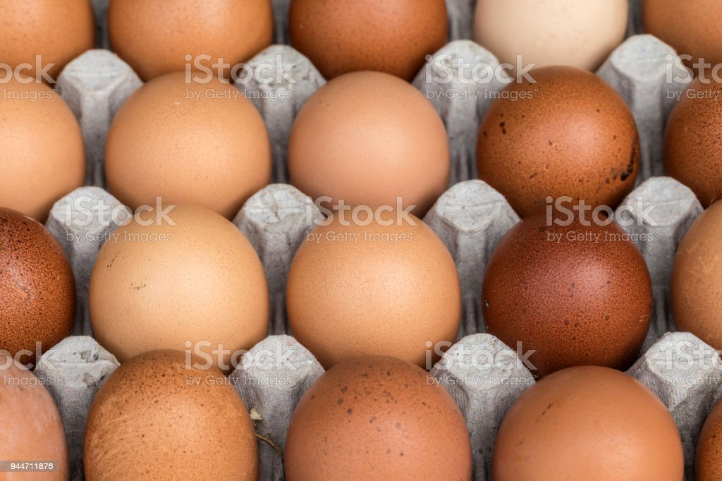 Chicken eggs pallet from the farm stock photo