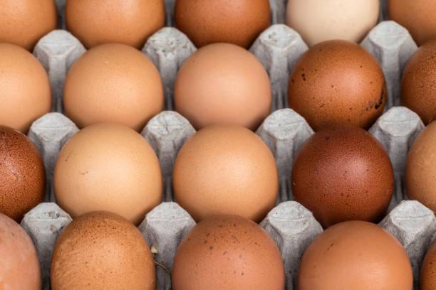 huhn eiern palette vom bauernhof - eierverpackung stock-fotos und bilder