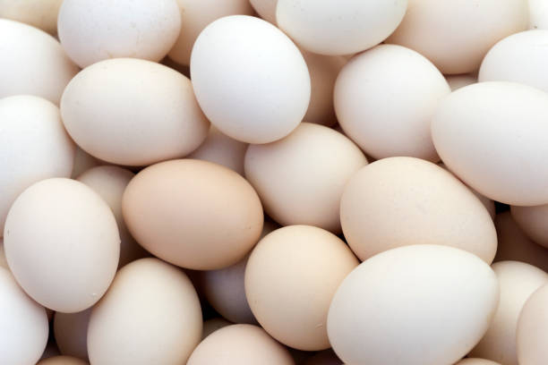 Chicken eggs Background of chicken eggs animal egg stock pictures, royalty-free photos & images