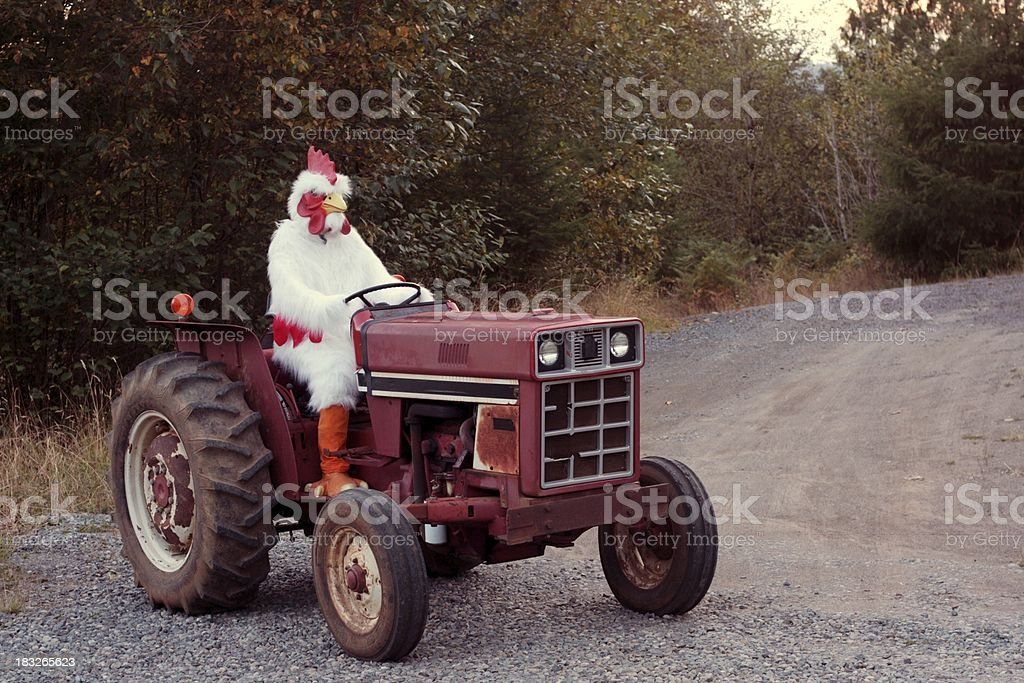 "Chicken Farmer on a Tractor ""A farmer in a rooster costume, driving a farm tractor.All images in this series..."" Agricultural Machinery Stock Photo"