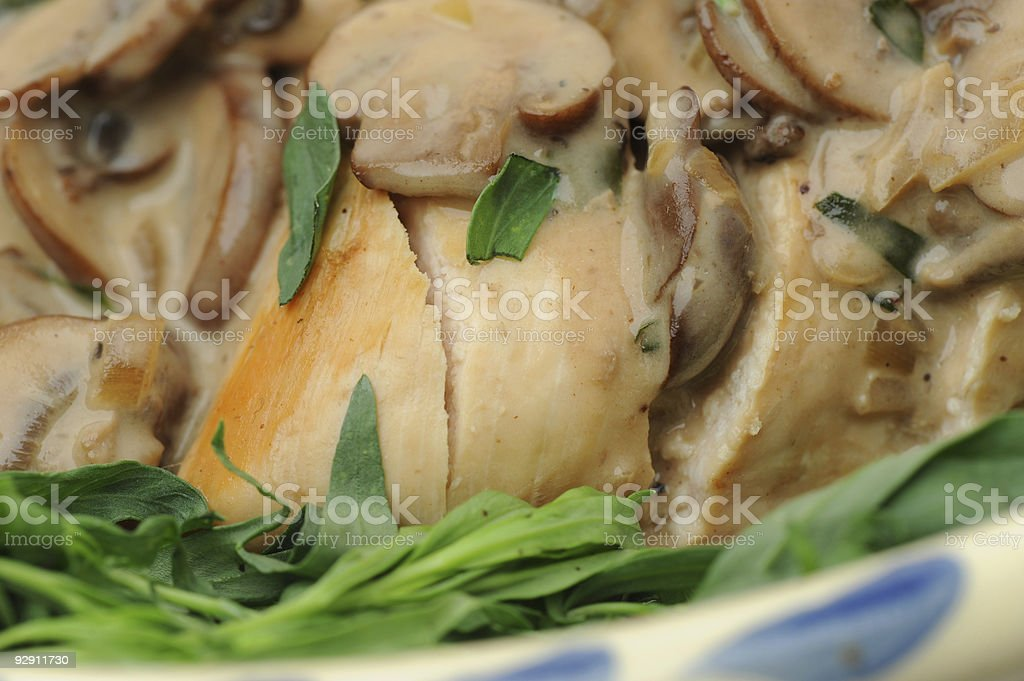 Chicken in Tarragon Mushroom Sauce royalty-free stock photo