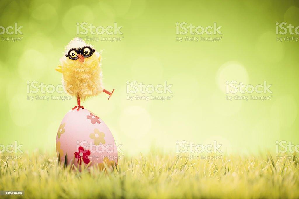 Poulet et Oeuf de Pâques à herbe ciel vert humour Nerd - Photo