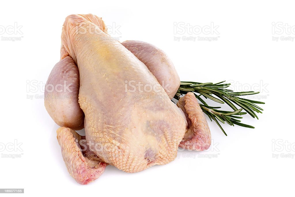 Chicken (Clipping Path) stock photo