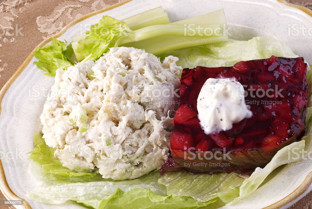 Chicken Salad and Cranberry Gelatin royalty free stockfoto