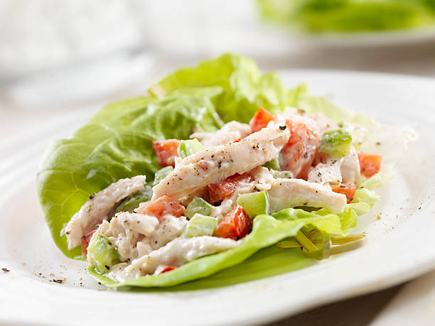 chicken salad lettuce wrap - lettuce stock pictures, royalty-free photos & images