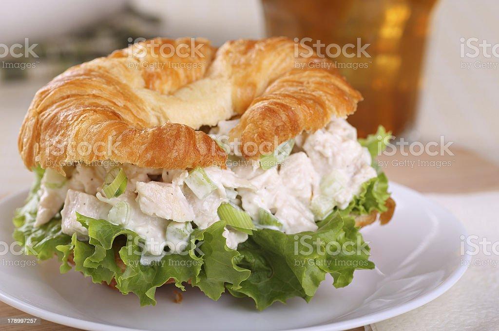 Chicken Salad Sandwich Closeup stock photo