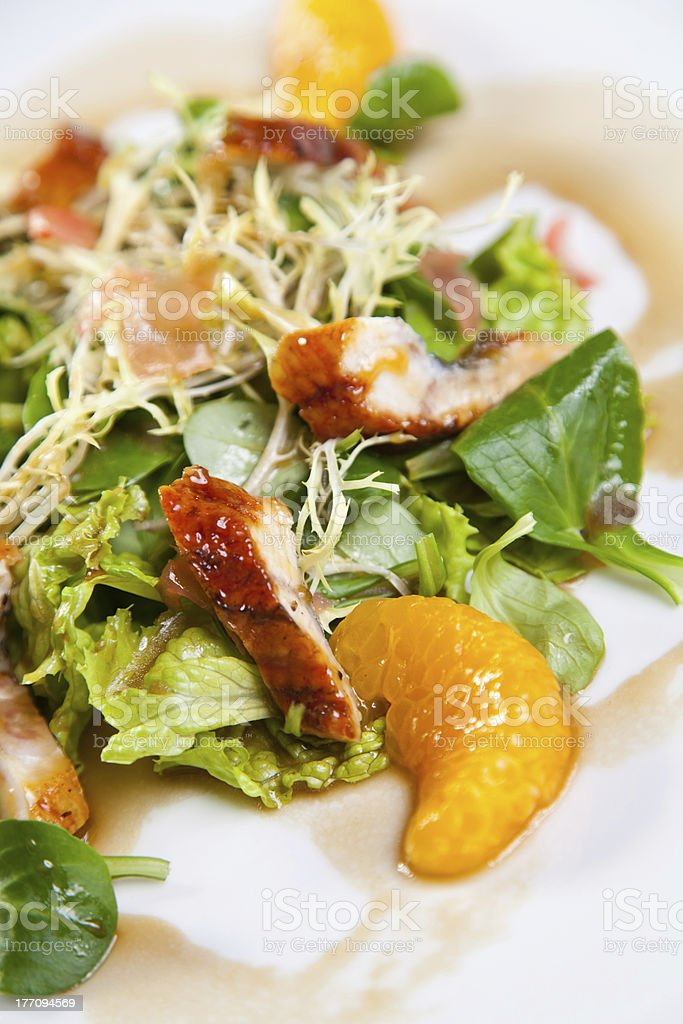 Chicken salad with mandarine and orange royalty-free stock photo