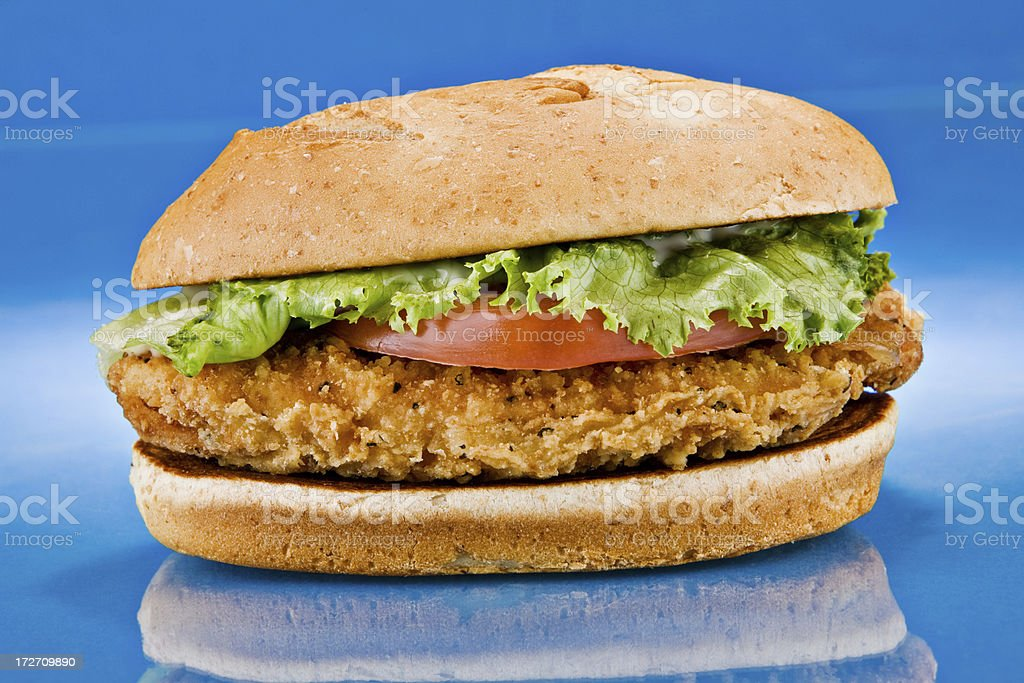 chicken sandwich on blue reflection front stock photo