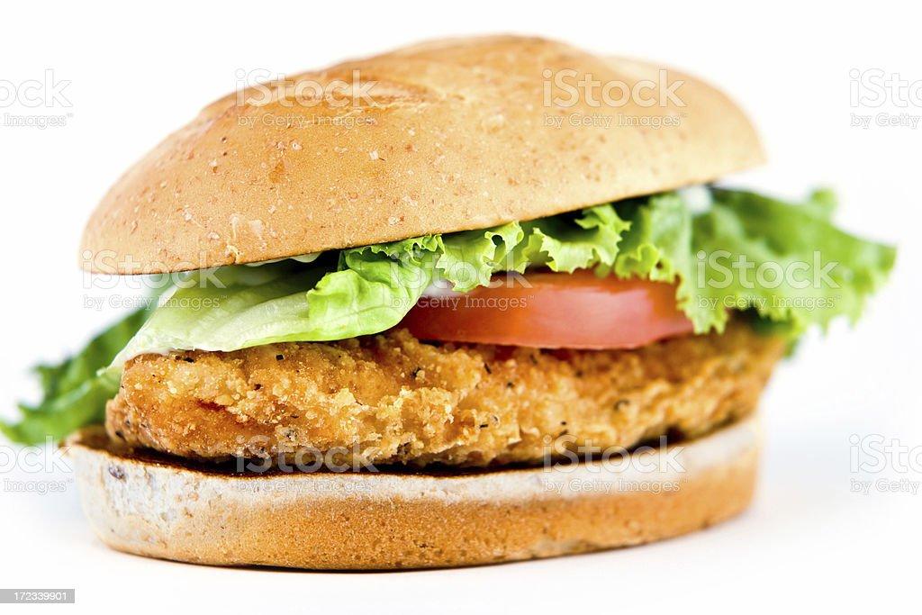 Chicken Sandwich (shallow depth of field) stock photo