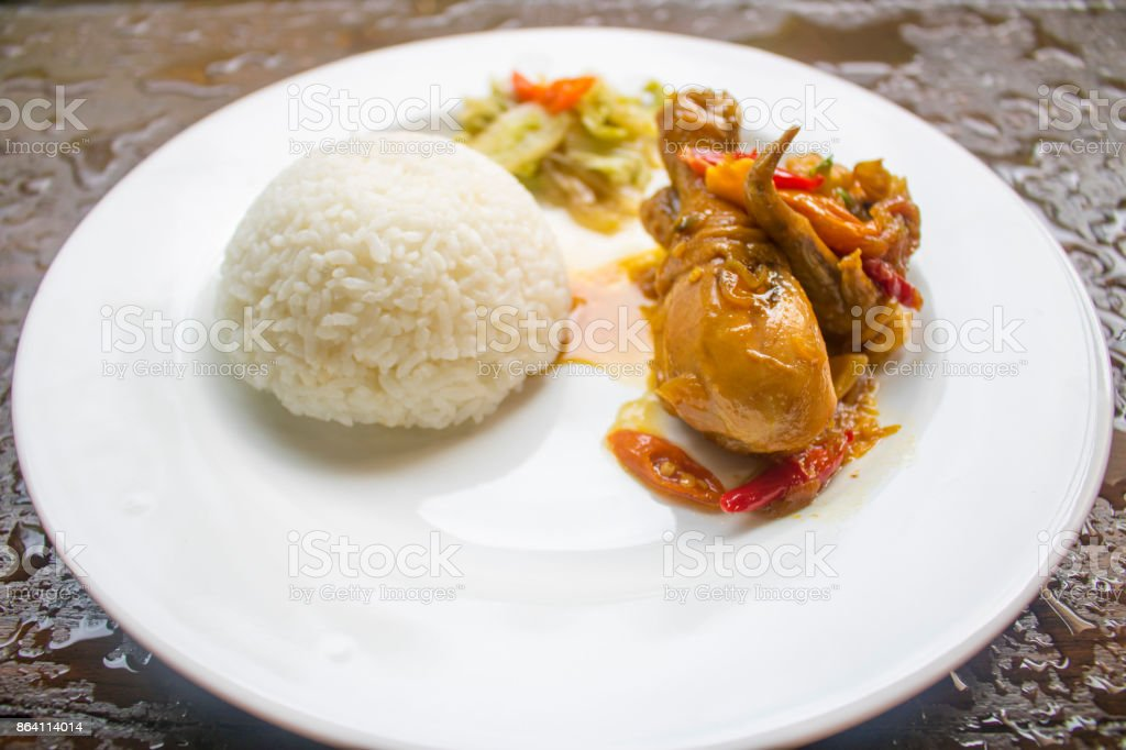 Chicken Soy Sauce with RIce, Chicken Food, Indonesian Food   Asian Food stock photo