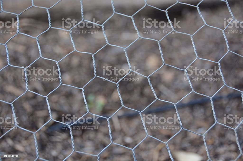 Chicken Wire Stock Photo Download Image Now Istock