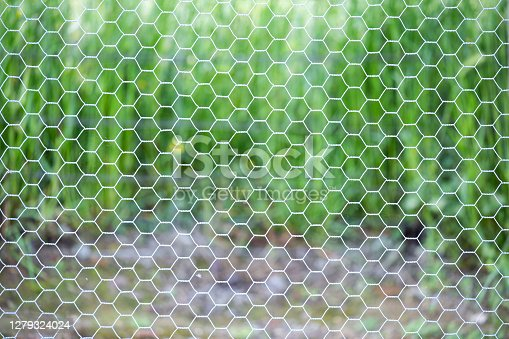 A sharp shot of chicken wire against a vibrant background in a country setting
