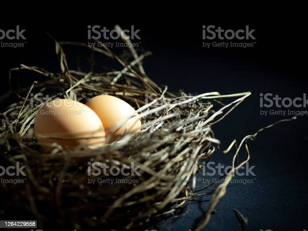 Chickens nest with the eggs photo on dark background picture id1264229558?b=1&k=6&m=1264229558&s=612x612&h=0ejne qytpdq6ouvsdf7zjvbnh5gg1wssq xmpadjj4=