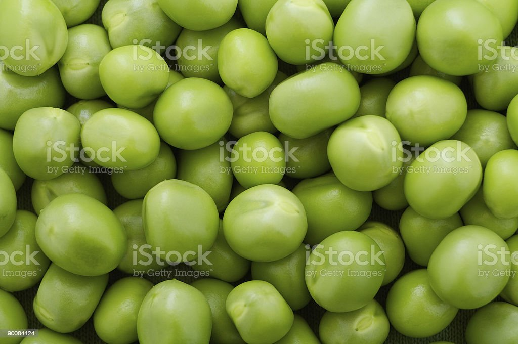 Chick-peas royalty-free stock photo