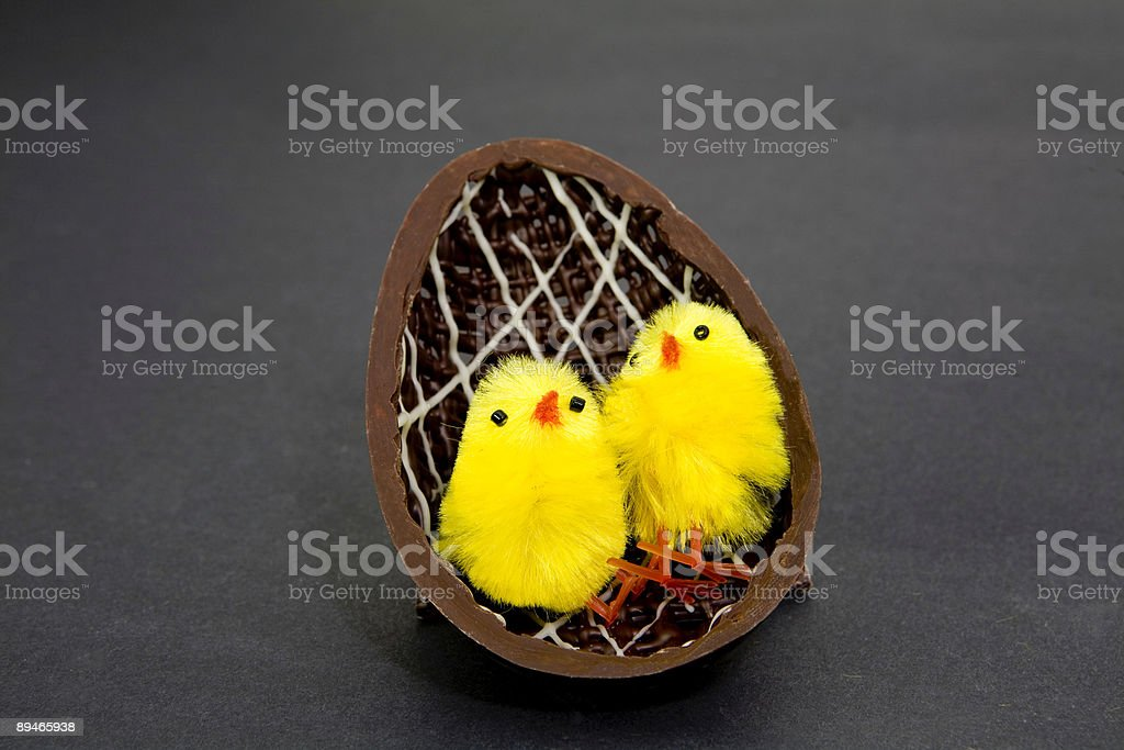 Chicks And Chocolate royalty-free stock photo