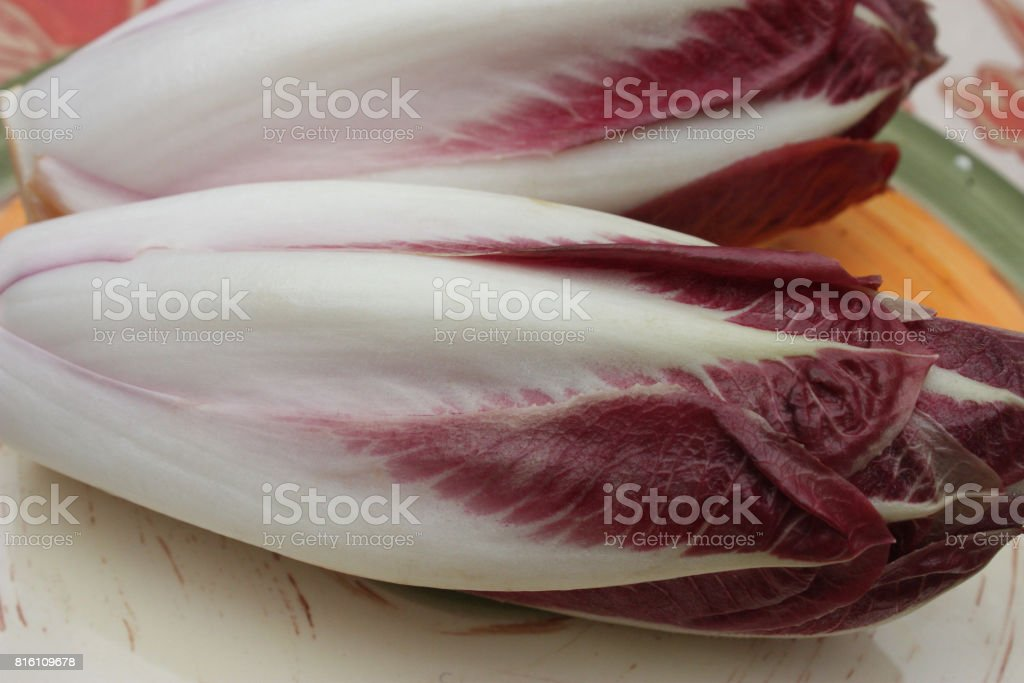 Chicon - Red Endive stock photo