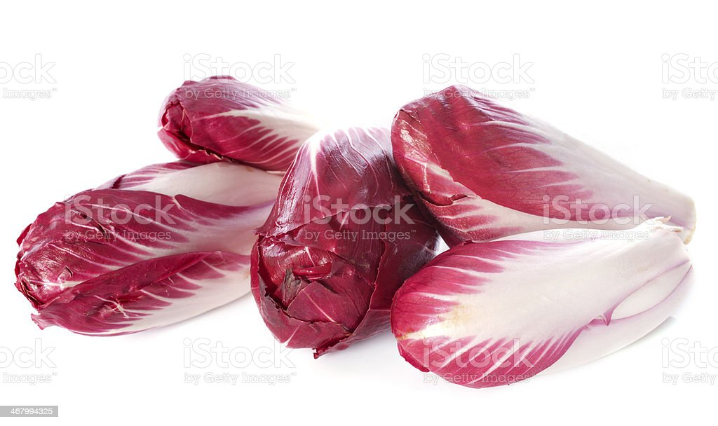 chicory carmine stock photo