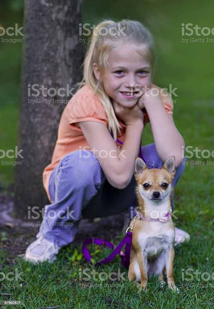 Chihauhua and Girl royalty free stockfoto