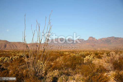 istock Chihuahuan Desert in Big Bend National Park 121216696