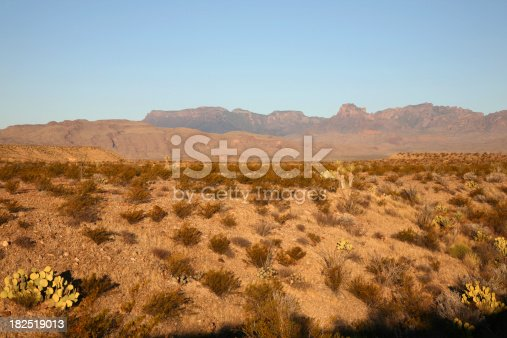 istock Chihuahuan Desert in Big Bend National Park 182519013