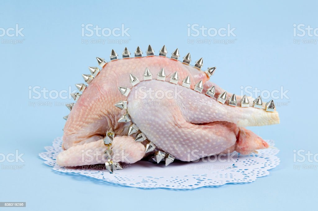 chiken punk spike stock photo