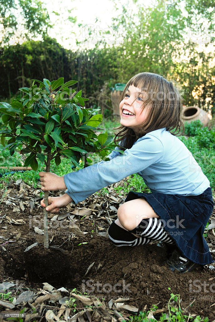 Chil planting tree stock photo