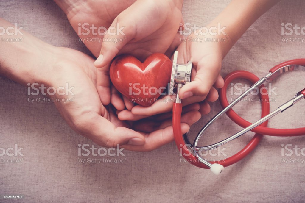 child and adult holding red heart with stethoscope, heart health,  health insurance concept stock photo