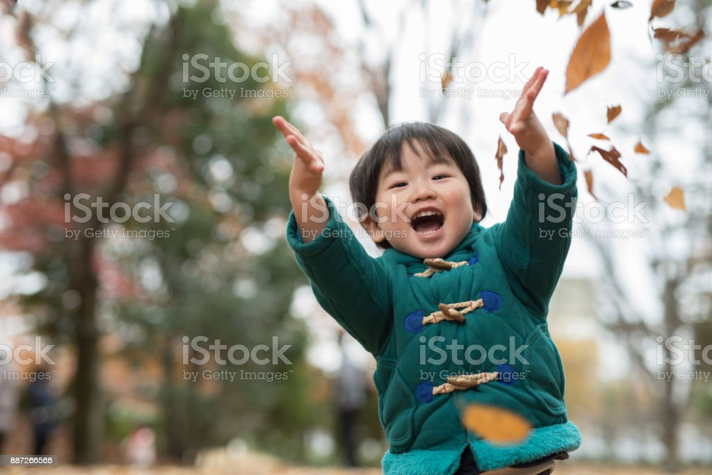 child and autumn leaves stock photo
