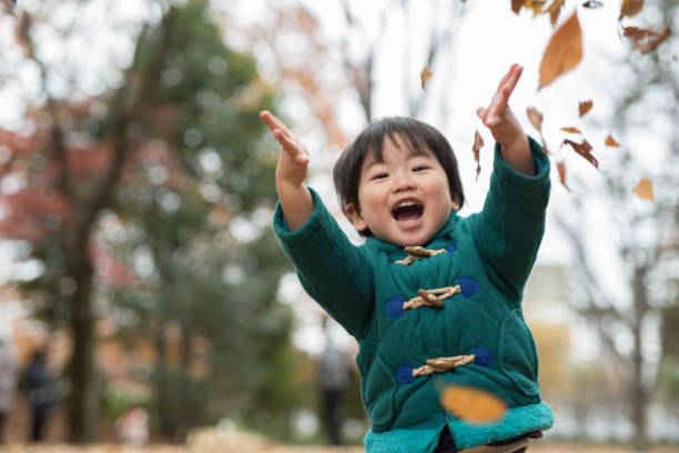 child and autumn leaves A child is in the beautiful autumn leaves field in Tokyo, Japan, photographed naturally without heavy processing. 2 3 years stock pictures, royalty-free photos & images