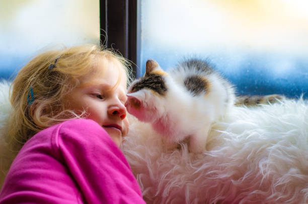 child and cat by the window