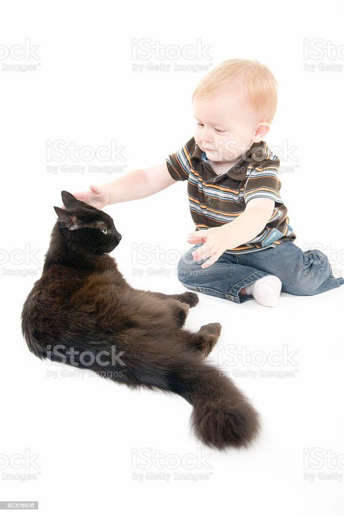 child and cat royalty-free stock photo