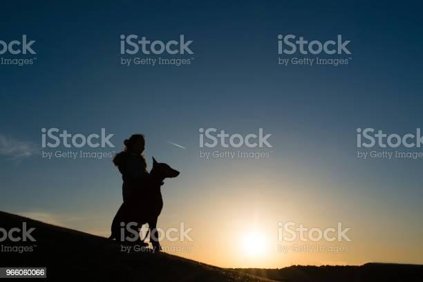 Child And Doberman Silhouette — стоковые фотографии и другие картинки Владелец домашнего животного