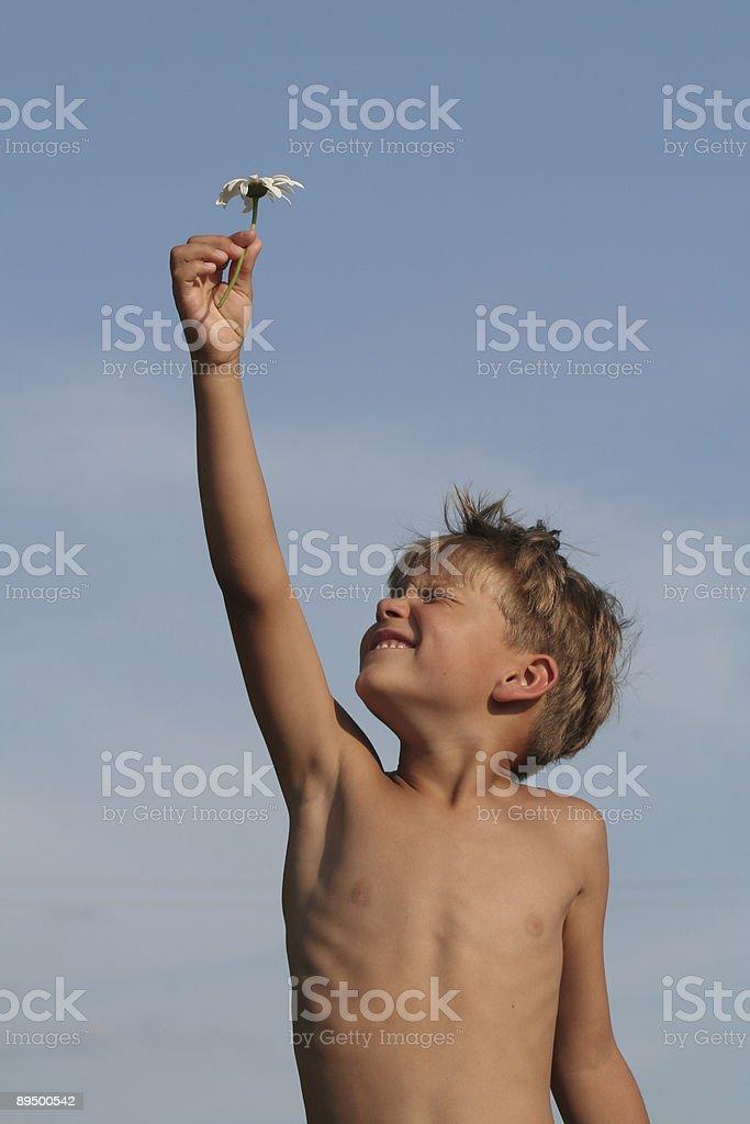 Child and flower royaltyfri bildbanksbilder