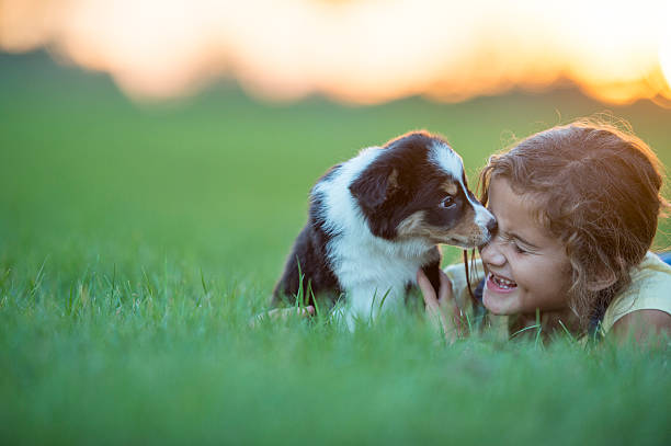 Child and Puppy stock photo