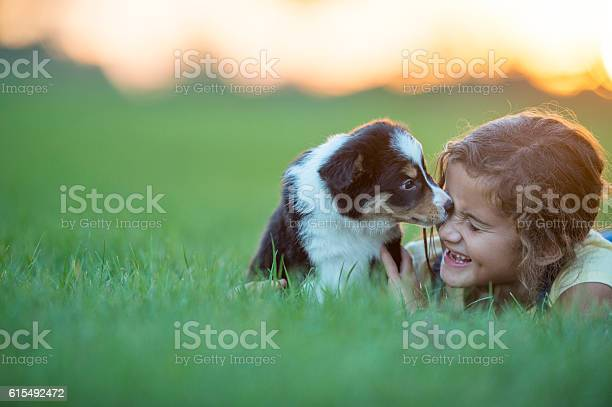 Child And Puppy Stock Photo - Download Image Now