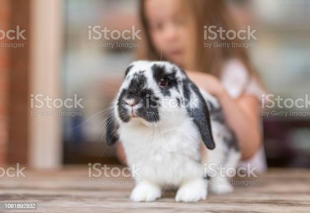 Child and rabbit picture id1061892932?b=1&k=6&m=1061892932&s=612x612&h=axnwxpind n380uqebdskiz10tllfk50v3xqs8x9zns=