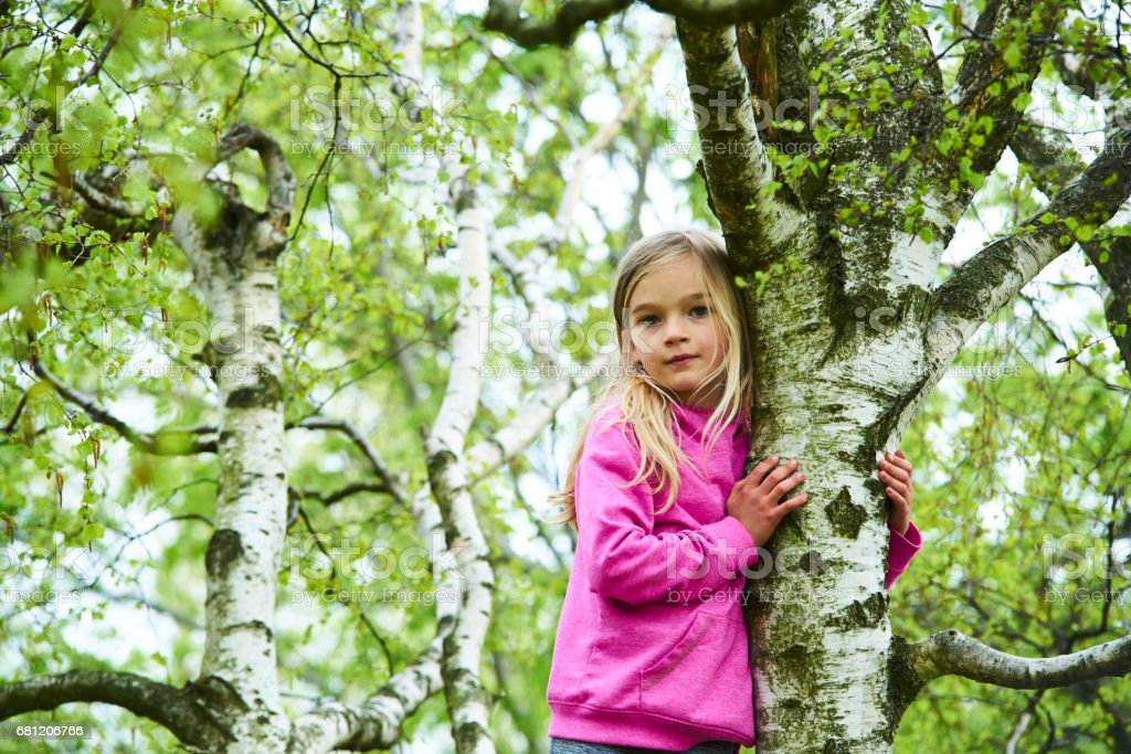 Child blond girl climbing a tree in a park outdoor royalty-free stock photo