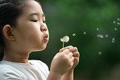 istock Child Blowing Away Dandelion 1251094150