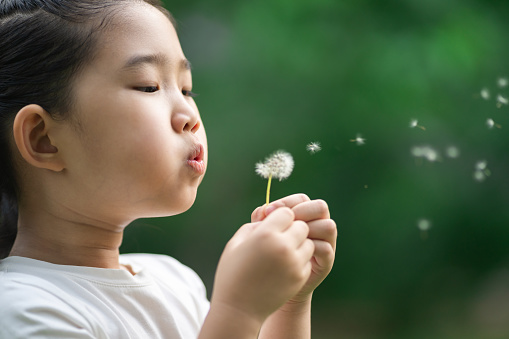Child Blowing Away Dandelion