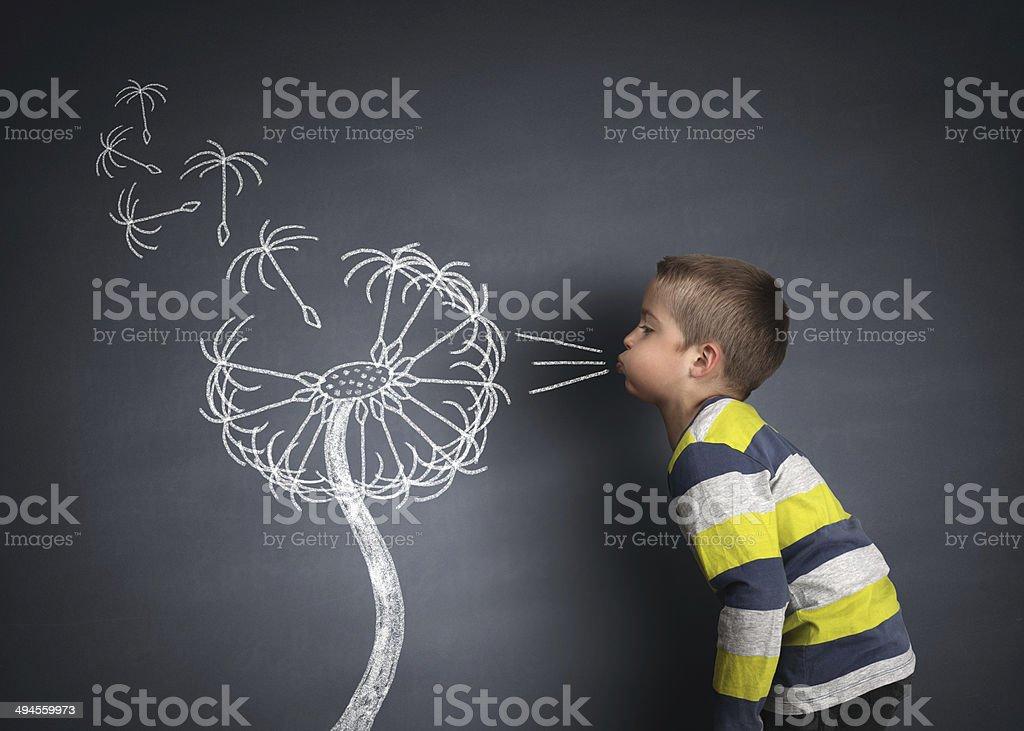 Child blowing dandelion seeds stock photo