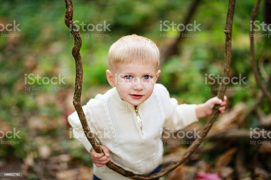 child boy in a bright sweater with lianas in forest stock photo