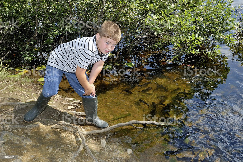 Child by Bog stock photo