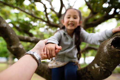 Child Climbs A Tree And Father Holds A Hand Stock Photo - Download Image Now
