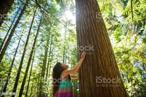 Child connecting with nature picture id938375296?b=1&k=6&m=938375296&s=612x612&h=2pbstdcav2z7 u59echibbzcqerxcwlnvjhowhbust8=