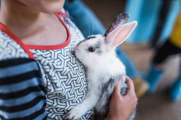 Child cuddling a bunny picture id913083964?b=1&k=6&m=913083964&s=612x612&w=0&h=j0jxe go3jsjtuwciqh rgxnndsv9rcwi467f4qszwk=