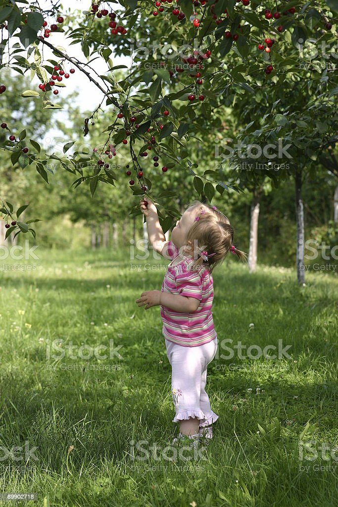 Child discovering nature royalty-free stock photo